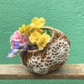Cotton DoilyまんまるBasket(brown)